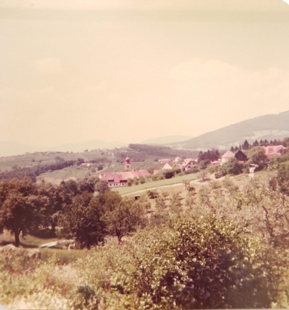 Obstbau Knaller Blick zum Nachbarn Juni 1982