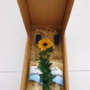 Obstbau Knaller Geschenk Kartonverpackung Edelbrände