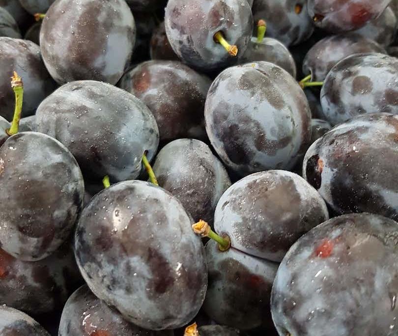 Obstbau Knaller Zwetschken